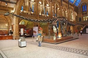 Natural History Museum Wormsoort Londen